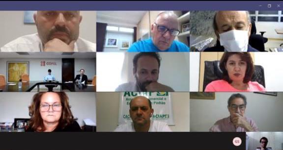 Reunião online com diretores da Copel